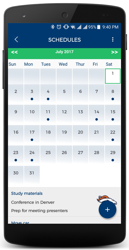PiVi Calendar Screen